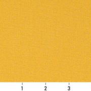 C102 Ruler Image