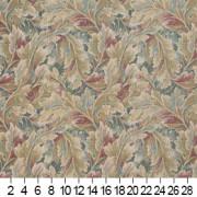 D569 Ruler Image